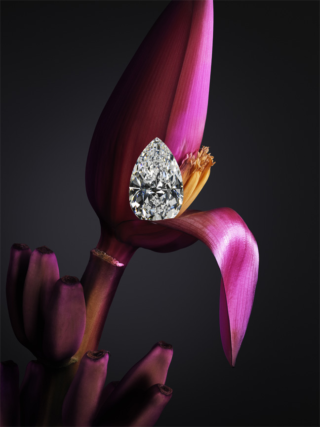Chopard - The Queen of Kalahari