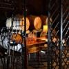 Les Expériences Camus: pour des moments inoubliables à Cognac